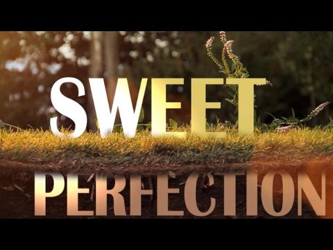 Never Shout Never - Sweet Perfection