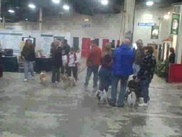 The Pets Expo in Edison