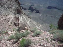 Gravity in the Grand Canyon