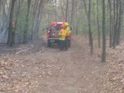 Brush Fire Chicopee