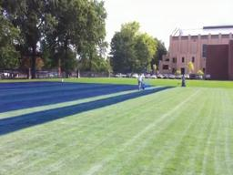 OSU paints field blue