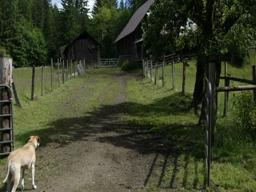 Alsea Valley Country Trail's Leaping Lamb Farm Stay