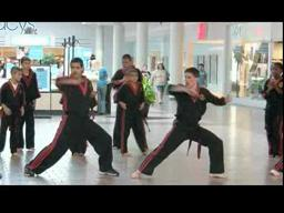 LaValle's Karate Demonstration at The Great Northern Mall