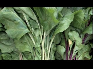 CNY Super Foods: Greens