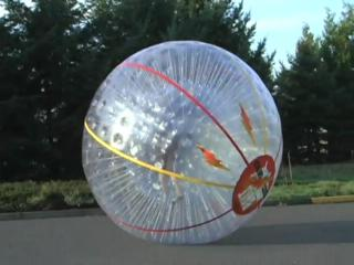Human-sized hamster ball