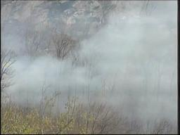 Westfield brush fire continues