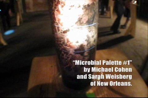 DesCours 2010 video: New Orleans architecture exhibit