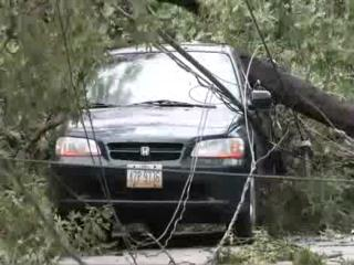 Hurricane Ike damages trees, homes in Bay Village