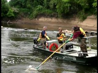 Electrofishing on the Cuyahoga River