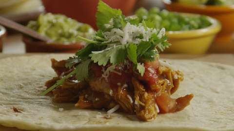 Salsa Chicken Burrito Filling