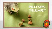 Sweet Potato Bird Treats