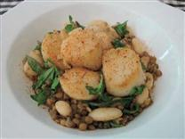 Scallops with Arugula, Lentils, and Butter Beans