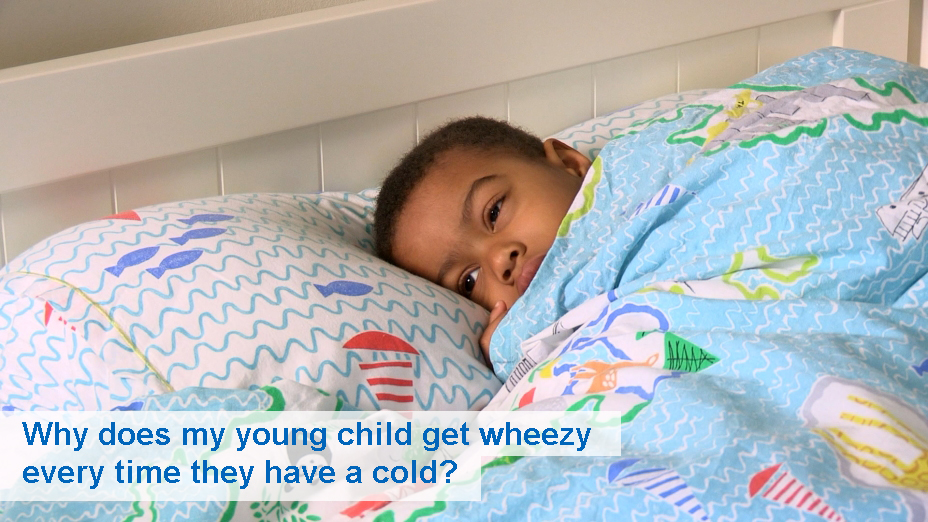 Why does my child get wheezy every time they have a cold? (12 to 30 months)