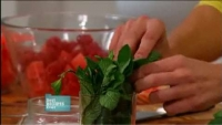 Best tips for cutting mint