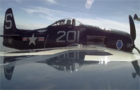 WWII Warbirds Reunite in the Sky