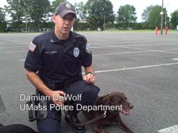 K9s Max and Kaila Retire from the UMass Police Department