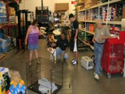 T.S.C. Helping Southwick Animal Shelter