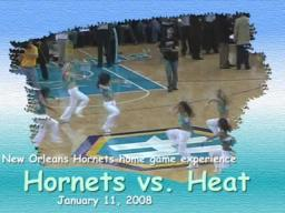 New Orleans Hornets Game Experience - Hornets vs. Heat