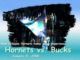 New Orleans Hornets Game Experience - Hornets vs. Bucks