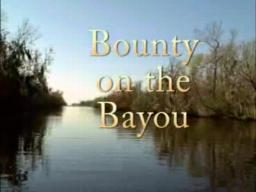Bayou Bounty Hunter