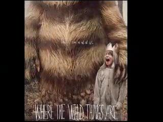 Video review: 'Where the Wild Things Are'