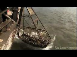 Oyster harvester video profile: How the Gulf oil spill has affected me