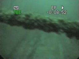 Ross Richardson's footage of Westmoreland shipwreck