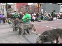 St. Patrick's Day Parade in Harrisburg