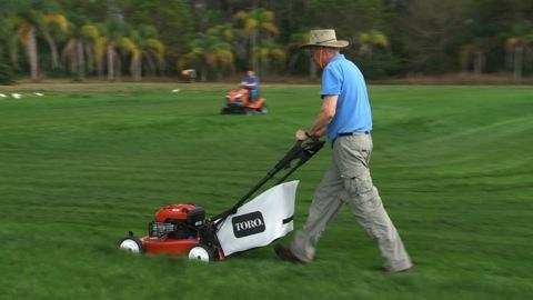 Keep your lawn looking its best