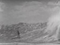 Surfing Big Waves in Makaha Bay in 1950s
