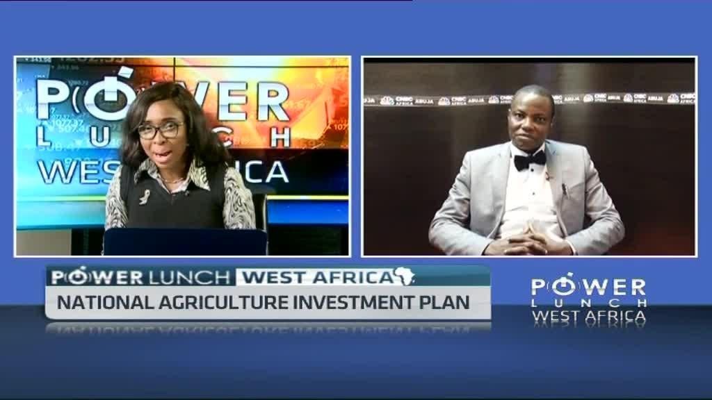 Nigeria's national agriculture investment plan