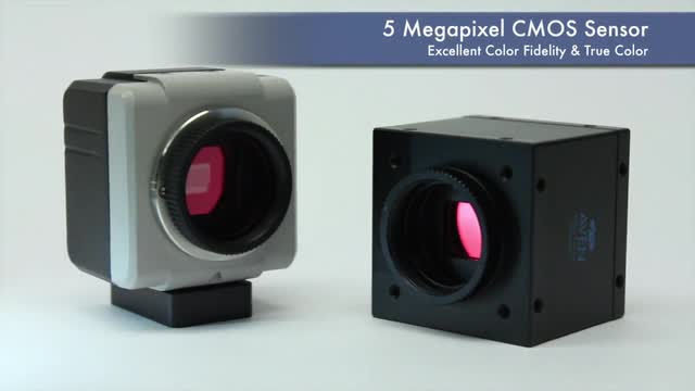 Mighty-Cam-USB-Cameras-From-Aven