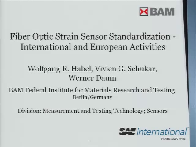 Fiber Optic Strain Sensor Standardization - International and European Activities