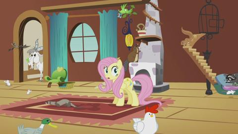 My Little Pony - Meet Fluttershy