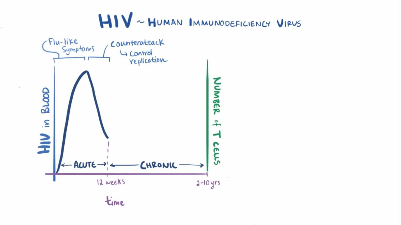 Symptoms of early hiv infection also called primary hiv infection or - Overview Of Human Immunodeficiency Virus Hiv