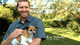 "Roy Halladay's ""Spay and Neuter Your Pets"" PSA"