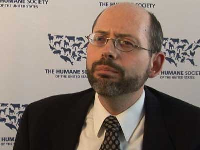 Dr. Michael Greger on Swine Flu