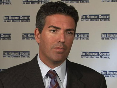 Wayne Pacelle on Michael Vick B-roll