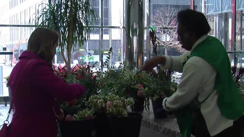 TheCurbside Chronicle flower sales