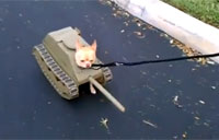 The Dog Tank Halloween Costume