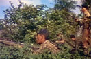 Vietnam War Color Combat Footage