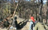 Rebels Battle Assad Troops in Woods