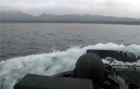 USMC AAVs Ship to Shore and More!