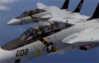 The Grumman F-14 Tomcat