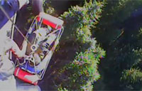 Hurt Logger Gets Medevac in Oregon