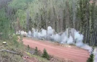 Timber! The US Army Goes Logging