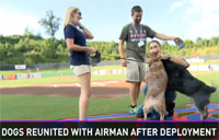 Airman, Dogs Reunited After Deployment