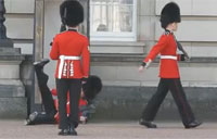 Queen's Guard Slips on Invisible Banana Peel