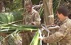 Grim Warrior: U.K. Infantry in the Jungle