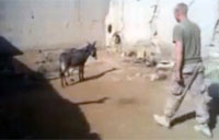 Marine Takes Taliban Donkey for Ride
